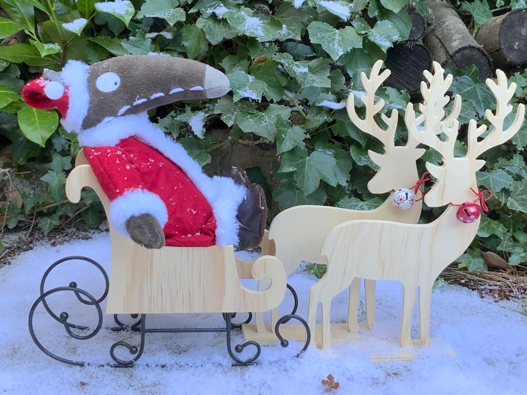 Petit Loup en Père Noël